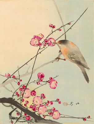 http://www.philadelphiabuildings.org/pab-images/omeka/1961.12.20.jpg