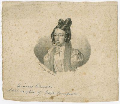 http://www.philadelphiabuildings.org/pab-images/Omeka/Bonaparte/128-PR-037.jpg